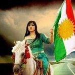 aryan.ahmadi1379
